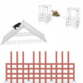 Attrezzature agility dog
